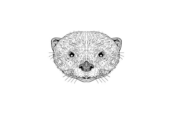 Asian Small-Clawed Otter Head