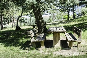 Wooden benches and a table in the wo