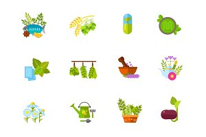 Herbs icon set