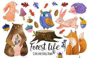 Cute forest  animals set