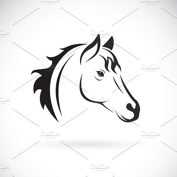 Vector Of A Horse Head Animal