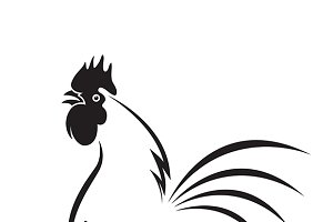 Vector of an rooster disign.