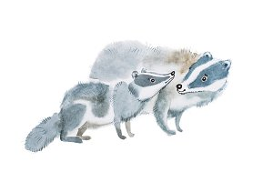 Mother badger and her baby hand-drawn with watercolors