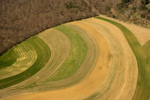 Aerial view of farm fields