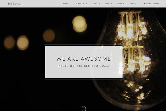 Peelaa Creative Business Template