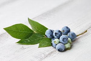 Blueberry branch close up on wooden background