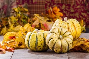 Fall harvest squash on table