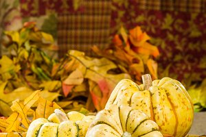 Fall squash and leaves