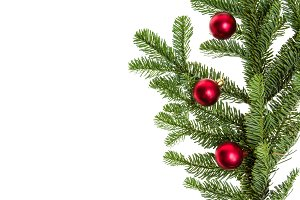 noble fir branch with ornaments