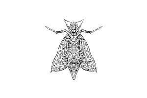 Elephant Hawk Moth Mandala