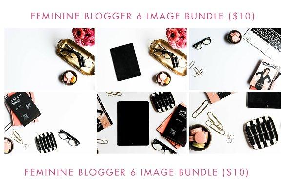 Feminine Blogger 6 Image Bundle
