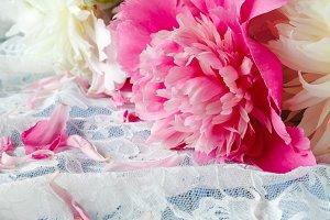 Splendid pink peonies flowers