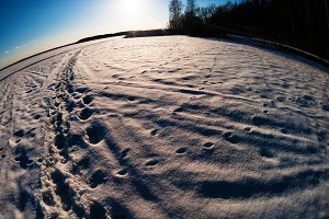 Winter footprints  fisheye composition