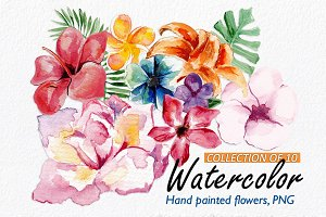 10 Watercolor Floral Elements