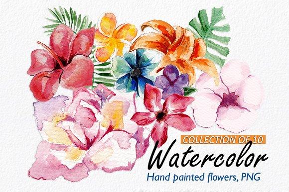 10 Watercolor Floral Elements