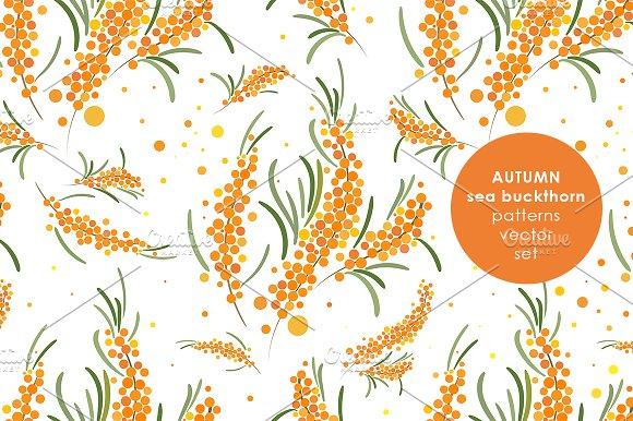 Sea Buckthorn Patterns Set