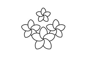 Spa salon plumeria flowers linear icon
