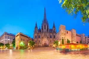 Barcelona Cathedral in the morning, Spain