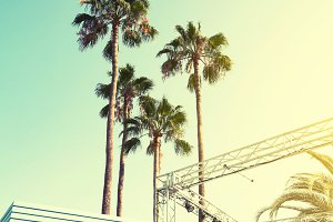 Beautiful Sunny Palms Beach Urban