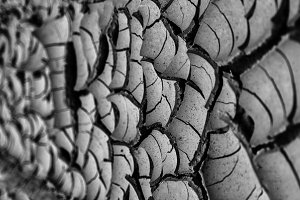Horizontal dry soil texture