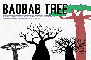 Baobab Tree Illustrations