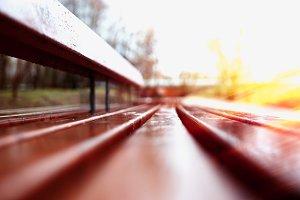 Horizontal bench bokeh with light leak background