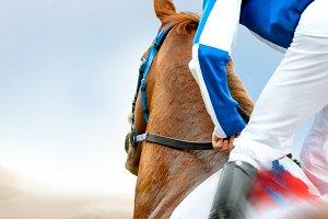 Jockey on a horse closeup