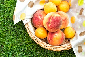 Apricots and peaches in a wooden basket with a tablecloth. Fruit on green fresh grass in the garden.