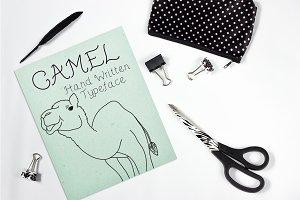 Camel - Font No.19