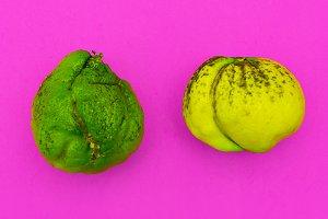 Couple Ugly lime and lemon.