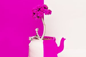 Creative Flower in a teapot.