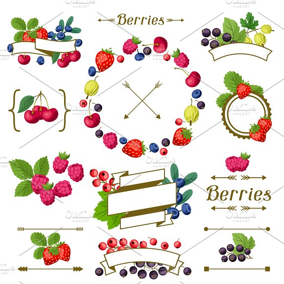 Set of labels with berries.