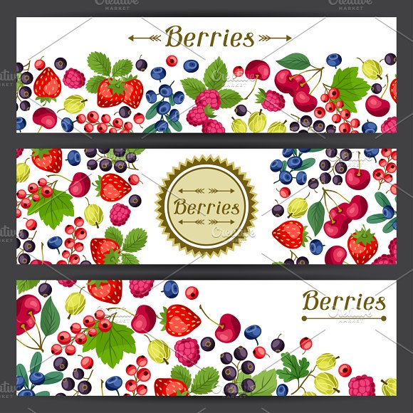 Banners design with berries.