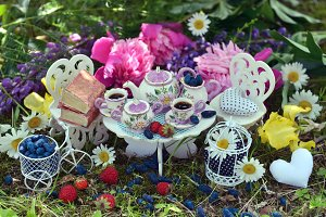 Fairies tea party in the garden