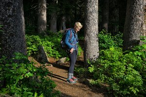 Woman Hiking Forest Trail