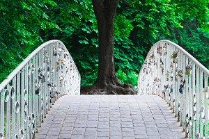 Old bridge in summer park