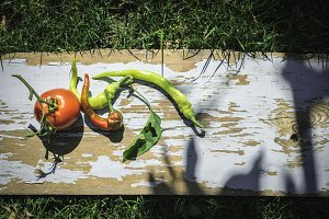 Vegetables, tomatoes and peppers in