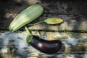 Zucchini and eggplant with blossom
