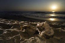Sunrise on the beach. Shells