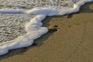 Food steps on the beach