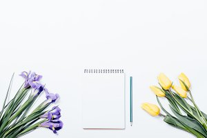 yellow tulips and notepad