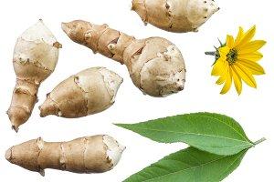 Jerusalem artichokes, flower