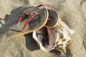 Slippers in the sand on the beach