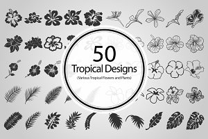 50 Tropical Designs (Vector)