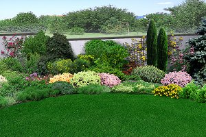 Natural grounds surrounding a home