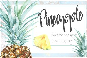 Pineapple tropical watercolor set
