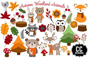 Woodland Autumn Animals Illustration