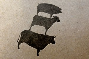 Animal icons -Pig-Cow-Lamb