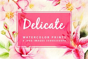 5 watercolor prints