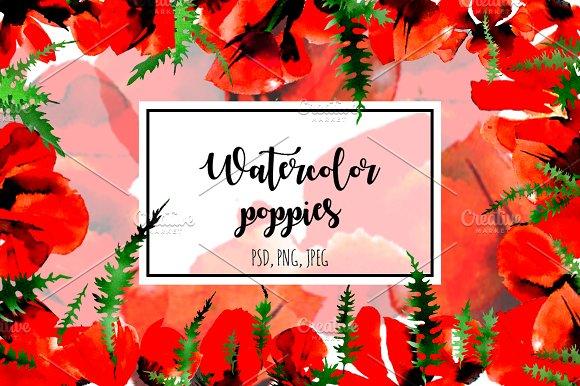 Poppy Flowers Watercolor Set